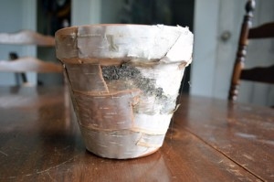 Birch Bark Covered Clay Pot