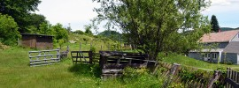 Sheep Farming Fences And Gates